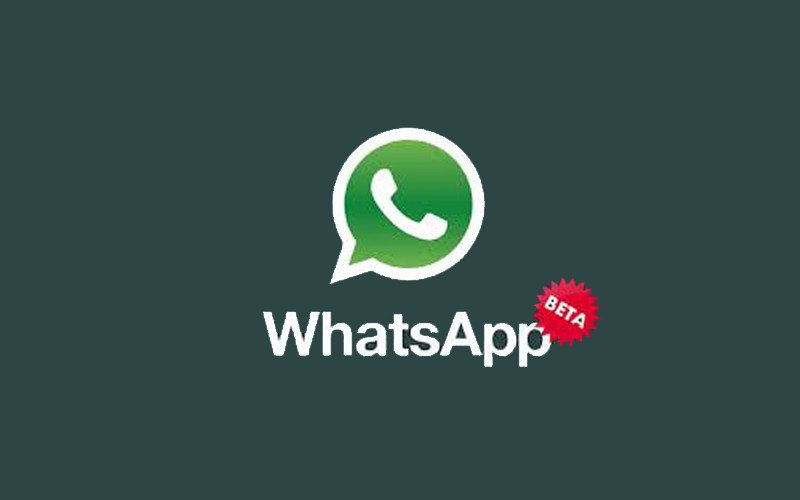 WhatsApp Gets New Solid Wallpapers