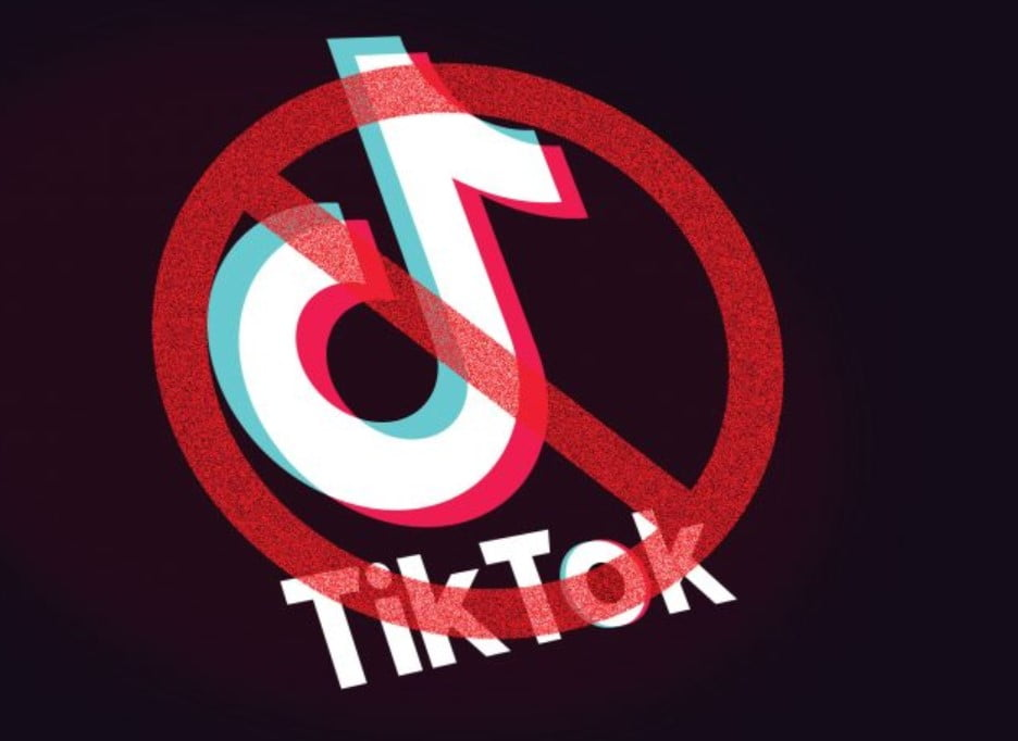 Government Bans 59 Chinese Apps Including TikTok